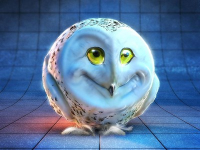 Free Weird Owl Face, computer desktop wallpapers, pictures, images